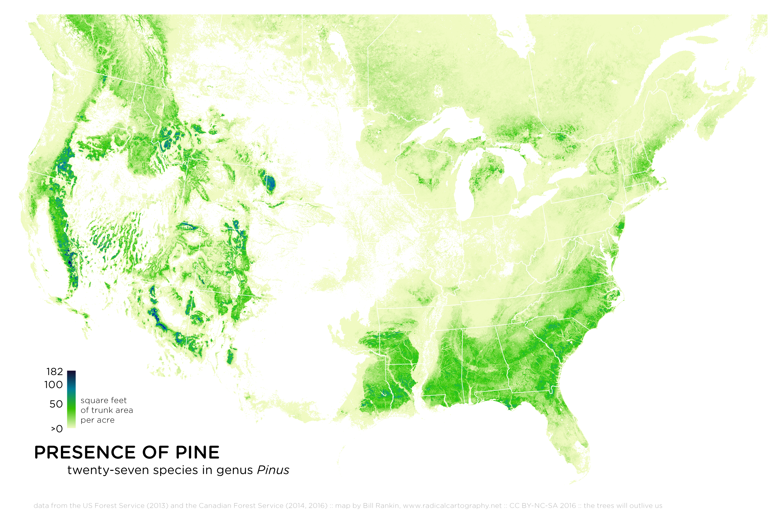 Where The Trees Are Image Of The Day Maps The Last Great Intact - Us forest map