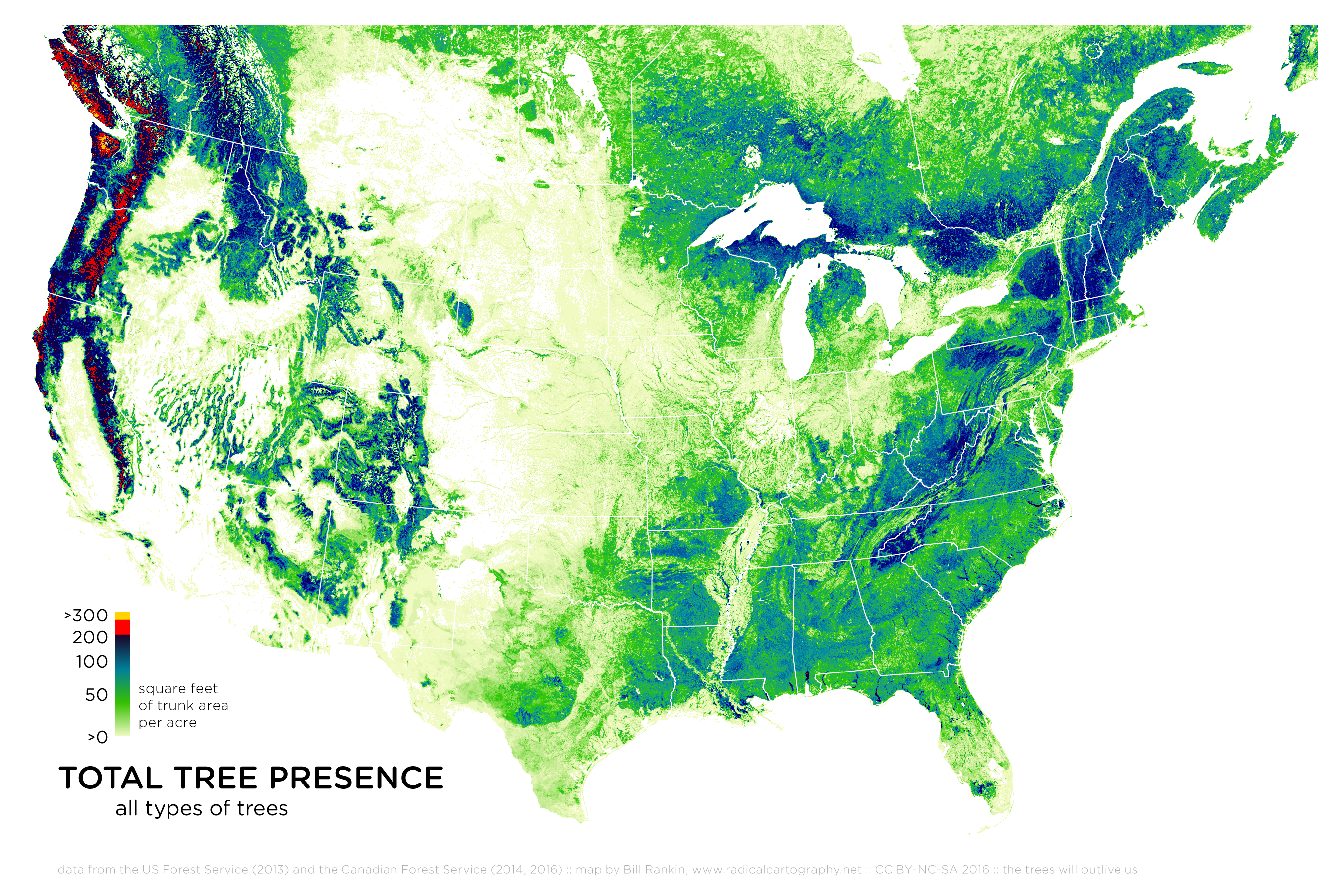 Radicalcartography - Map of us forest types